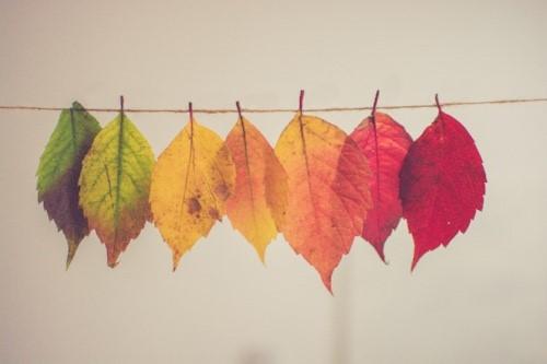 Add some colour..